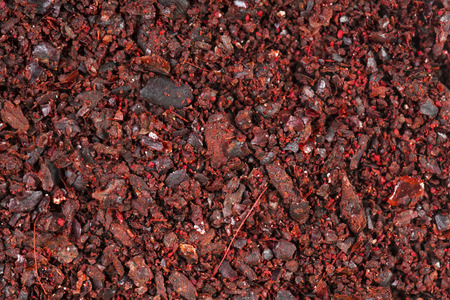 Ground sumac spice as background . Macro shot