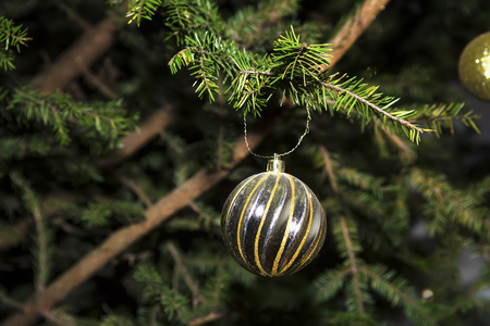 Fir branch with balls and festive lights on the Christmas background