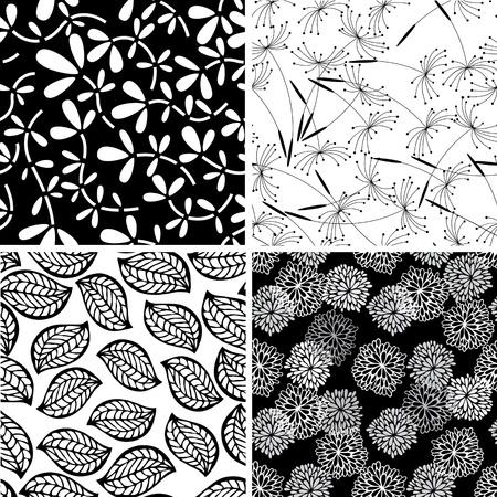 crisantemos: Conjunto de fondos florales elegantes sin costura