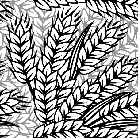 wheat illustration: Seamless black and white ornament with wheat ears