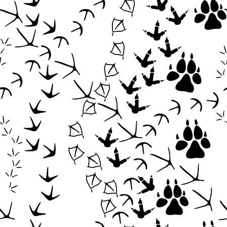 huellas de animales: Patrón sin fisuras con las pistas de la pata de los animales