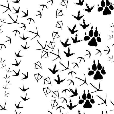animal foot: Seamless pattern with animal paw tracks