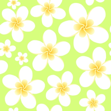 frangipani flower: Seamless ornament whith tropical flowers frangipani Illustration
