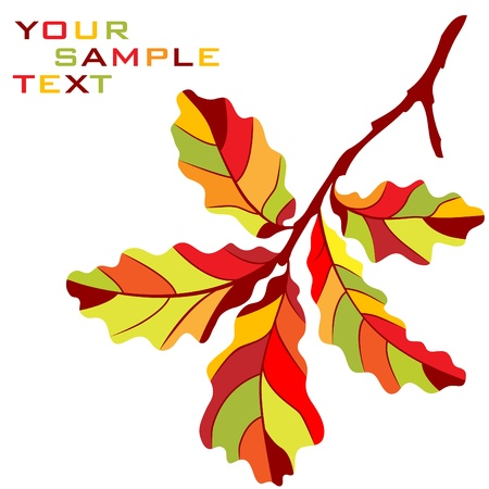 Autumnal oak branch Vector