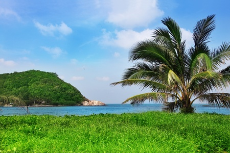 Exotic tropical landscape in Thailand photo