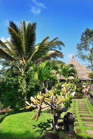 laze: View of nice tropical resort on Bali, Indonesia Stock Photo