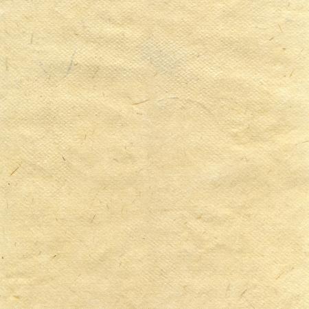 paper craft: El arroz a mano la textura de papel