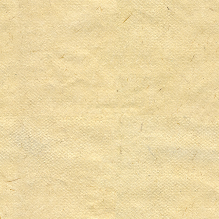 Seamless beige rice paper pattern background. The high resolution blank texture.