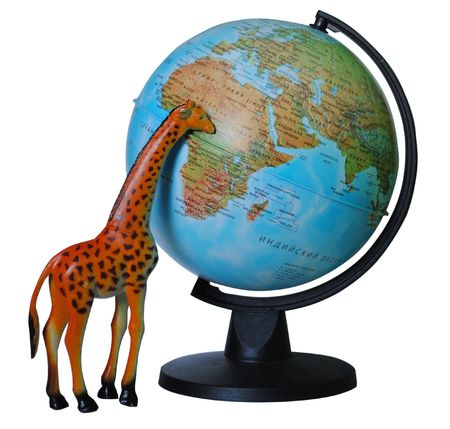 Toy giraffe looks at his african home on globe.