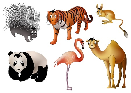 porcupine: Six asian animals - porcupine, tiger, jerboa, panda, flamingo and camel - drawn in kind child style
