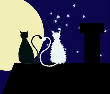 animal mating: Two cats are sitting on the rooftop with their tails are heart-shaped.