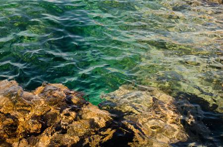 yegua: fondos rocosos con agua de mar trasparente. Polignano a Mare, Italia