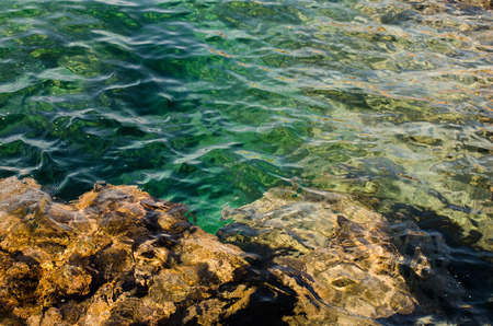 mare: Rocky seabed with trasparent seawater. Polignano a Mare, Italy