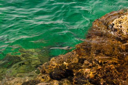 yegua: fondos rocosos con agua de mar esmeralda. Polignano a Mare, Italia. Foto de archivo