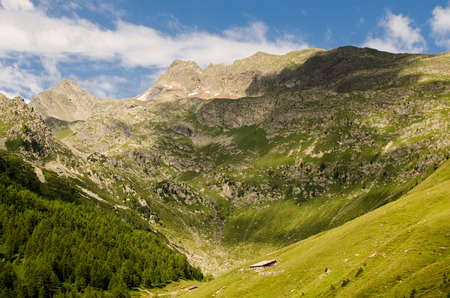 alto adige: Montains and green hills of Alto Adige, Italy