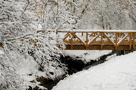 winter park: Wooden winter bridge in the winter park