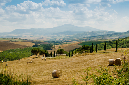 Hills of Tuscany with haycocks, fields and cypresses