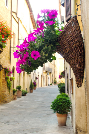 Flowers in the wicker hanging on the wall. Pienza. Italy.