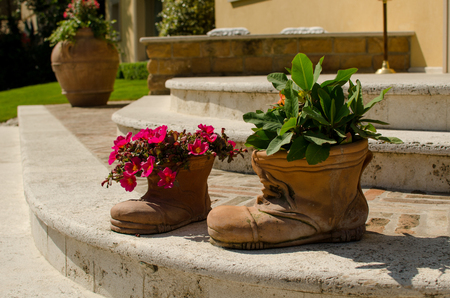Flowers in pots as boot on the stair