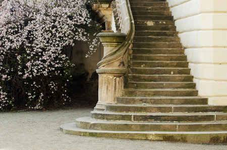 Staircase of a castle in Prague with blossoming tree Stock Photo