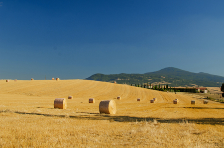 Stubble field with round hay bales, with farm, cypresses and hills on the background