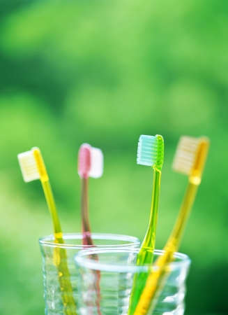 four toothbrushes photo