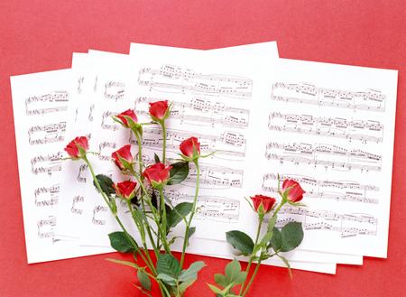 partition musique: partition et rose rouge Banque d'images
