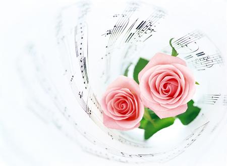 music score: music score and roses Stock Photo