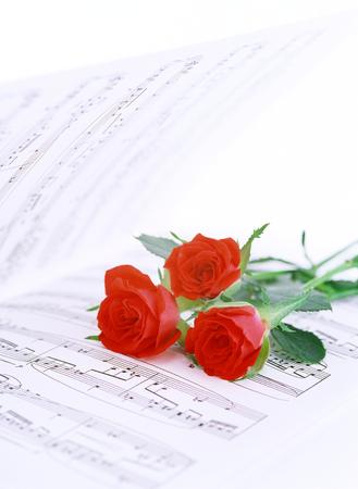 partition musique: partition et roses Banque d'images