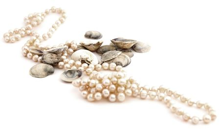 shells and pearls isolated against white background photo