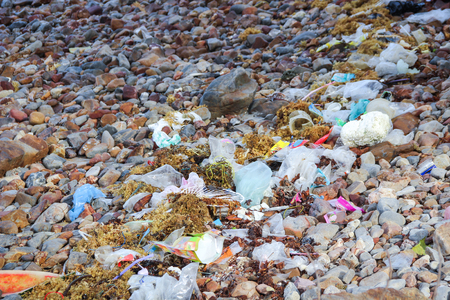 careless: Garbage on the rock shore, waste pollution
