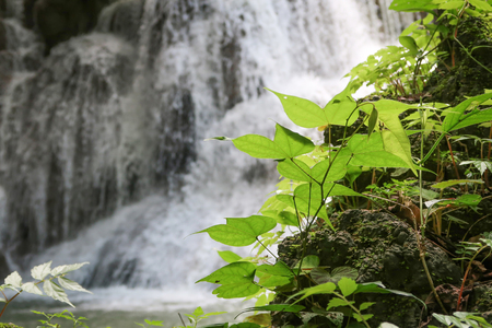 khamin: Huay Mae khamin waterfall in National Park Srinakarin dam, Kanchanaburi, western of Thailand Stock Photo