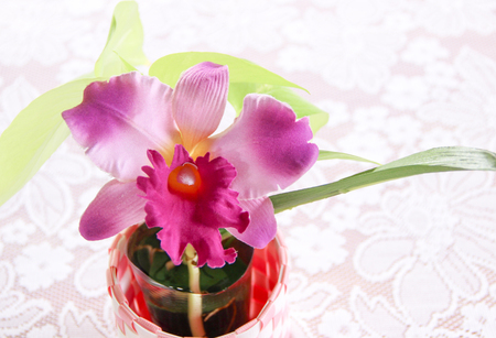 Purple fake orchid in the vase Stock Photo