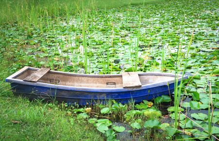 Old plastic rowboat in the lotus field