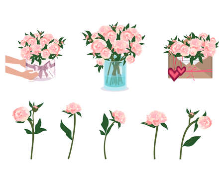 Hands are holding peonies. Bouquet delivery. Flowers in a vase, envelope and round box. Spring and summer plants, vector decoration