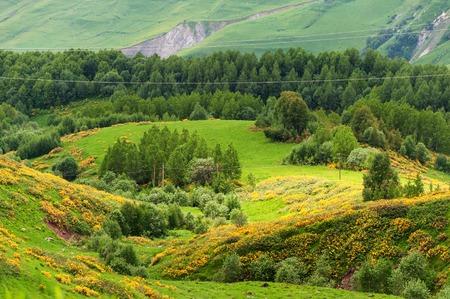 View of Caucasian Mountains in Gudauri, Georgia.