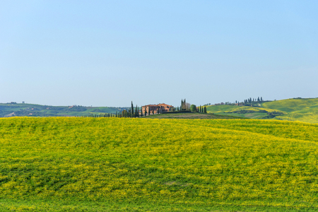 Amazing spring colorful landscape. Beautiful farmland rural landscape, cypress trees and colorful spring flowers in Tuscany, Italy. Typical Tuscany stone rural house. Stockfoto
