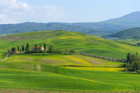 Amazing spring colorful landscape. Beautiful farmland rural landscape, cypress trees and colorful spring flowers in Tuscany, Italy. Typical rural house. Reklamní fotografie