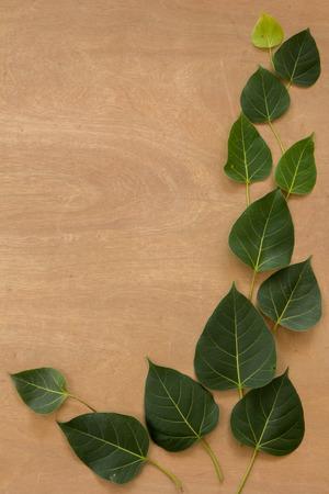green brown: Leaves, wood, texture, leaf green, brown ground.