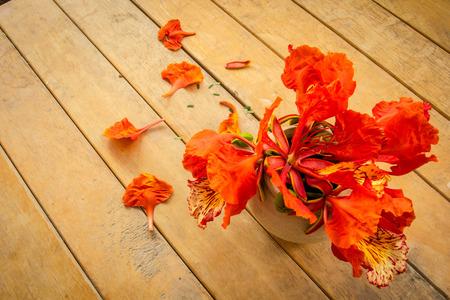 wooden floors: Orange flowers, old wooden floors, wooden tables, warm vintage wilted.