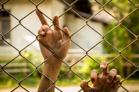 boundary: boundary., cages, detention, equipment, forced, freedom, mesh, trafficked Stock Photo