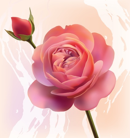 Mesh rose flower Vector