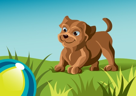 Dog playing ball on green grass