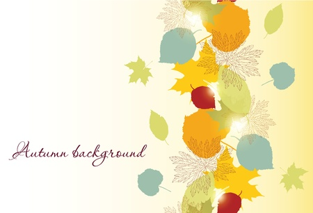 seamless autumn leafs  Vector