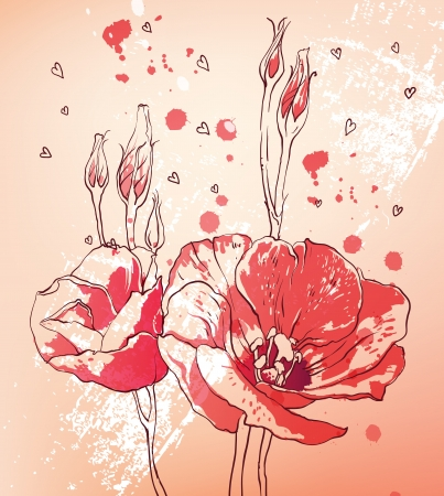 vector floral illustration of colorful summer lily flowers