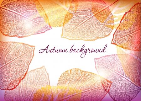 秋の葉の背景  イラスト・ベクター素材