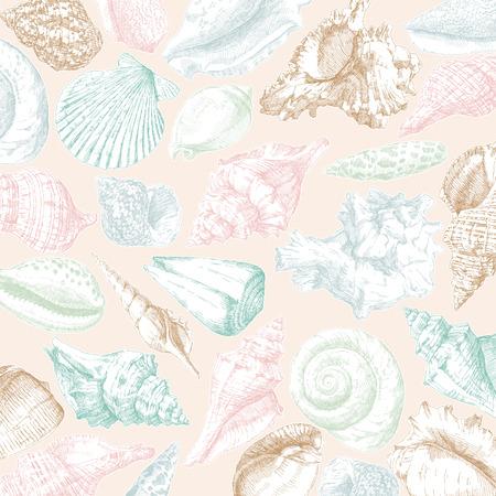 手図面貝殻のフレーム カードの背景。ベクトルの図。  イラスト・ベクター素材