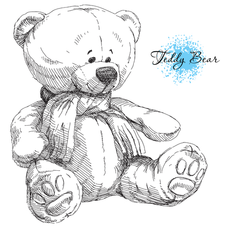 Beauty hand drawn teddy bear on white