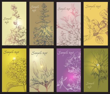 engraving print: Beauty hand drawing card flower frames. Vector illustration.