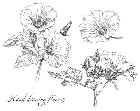 Mano de belleza dibuja ilustración con flores. Vector.